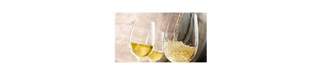 VINFINPASCHER | Découvrez notre gamme de Bordeaux blanc à prix déstockage !